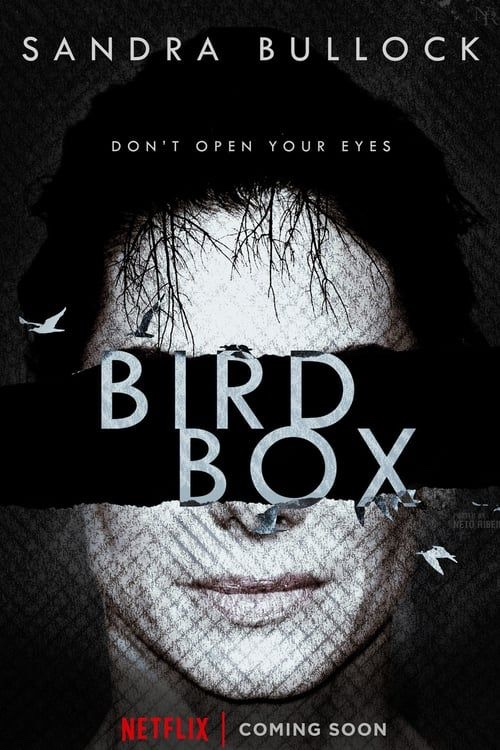 Bird Box (2018, Dir. Susanne Bier)
